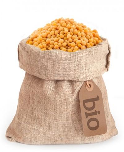 Gorčična semena rumena BIO
