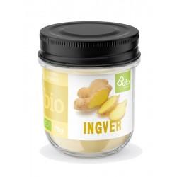 Ingver v prahu BIO